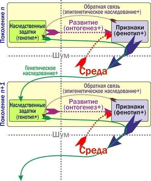 Пути передачи информации